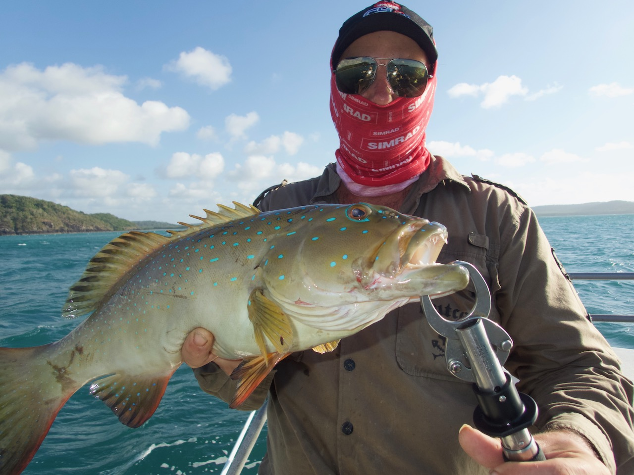 Coral Trout Popper fishing Albany Island Cape York Queensland